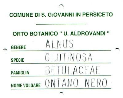 """Targhetta dell'  """"Ontano nero"""""""